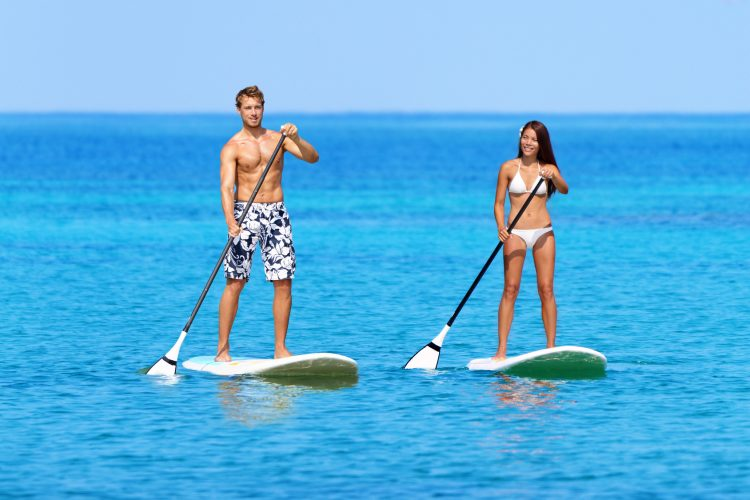 paddle board paddles